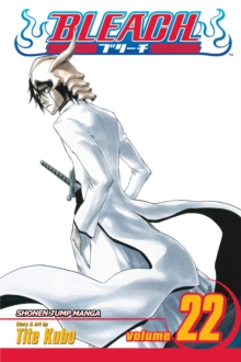 Bleach, Vol. 22, Paperback Book