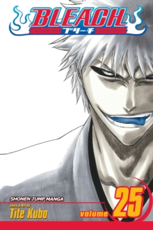Bleach, Vol. 25, Paperback Book