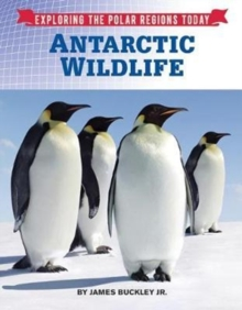 Antarctic Wildlife, Hardback Book
