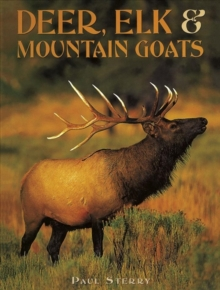 Deer, Elk & Mountain Goats, Hardback Book