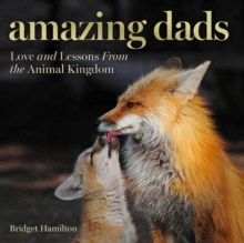 Amazing Dads, Hardback Book