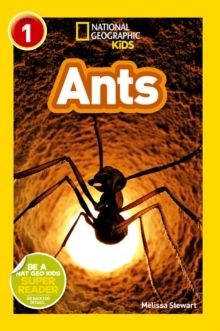 National Geographic Kids Readers: Ants, Paperback / softback Book