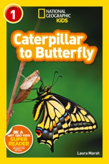 National Geographic Kids Readers: Caterpillar to Butterfly, Paperback Book