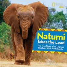 Natumi Takes the Lead : The True Story of an Orphan Elephant Who Finds Family, Hardback Book