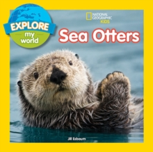 Explore My World Sea Otters, Paperback / softback Book
