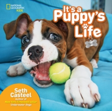 It's a Puppy's Life, Hardback Book