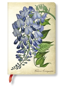PAINTED BOTANICALS BLOOMING WISTERIA MIN, Hardback Book