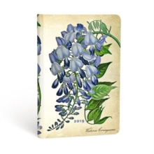 BLOOMING WISTERIA MINI 2019 VSO,  Book