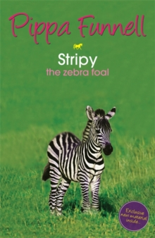 Stripy : The Zebra Foal, Paperback Book