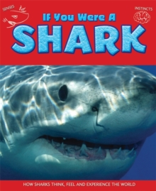 If You Were a Shark, Hardback Book