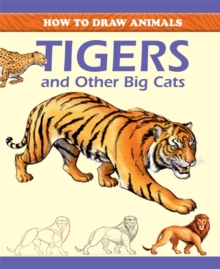 Tigers and Other Big Cats, Paperback Book