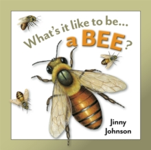 What's It Like to Be: A Bee?, Hardback Book