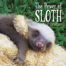 The Power of Sloth, Hardback Book
