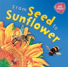 Lifecycles: From Seed To Sunflower, Paperback Book