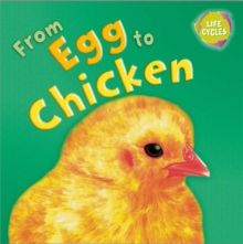 Lifecycles: From Egg To Chicken, Paperback Book