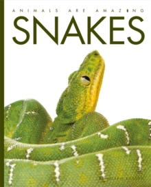 Animals Are Amazing: Snakes, Paperback Book