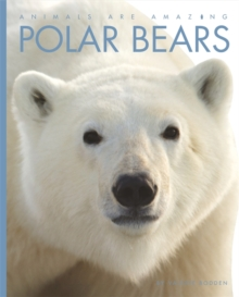 Animals Are Amazing: Polar Bears, Paperback / softback Book