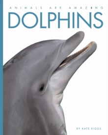 Animals Are Amazing: Dolphins, Paperback Book