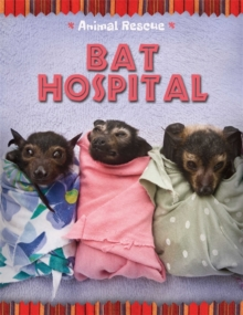Animal Rescue: Bat Hospital, Hardback Book