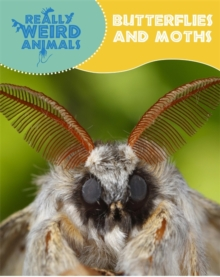Really Weird Animals: Butterflies and Moths, Paperback / softback Book