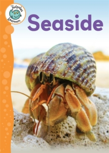 Tadpoles Learners: Seaside, Hardback Book