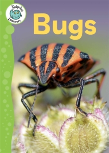 Tadpoles Learners: Bugs, Paperback / softback Book