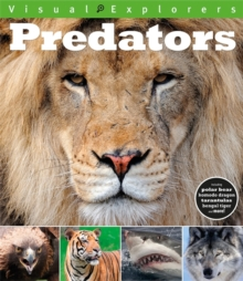 Visual Explorers: Predators, Paperback Book
