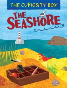 The Curiosity Box: The Seashore, Paperback / softback Book