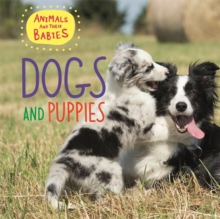 Animals and their Babies: Dogs & puppies, Hardback Book
