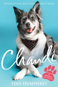 Chandi : The Rescue Dog Who Stole a Nation's Heart, Paperback Book