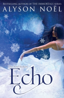 The Soul Seekers: Echo, Paperback Book