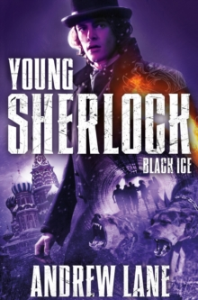 Black Ice, Paperback / softback Book