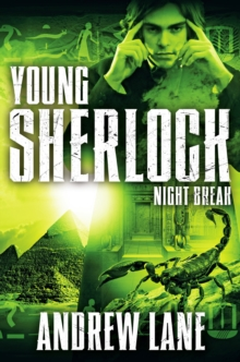 Night Break, Paperback Book