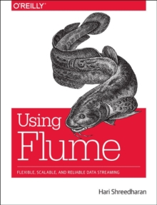 Using Flume : Flexible, Scalable, and Reliable Data Streaming, Paperback Book