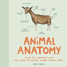 Animal Anatomy, Hardback Book