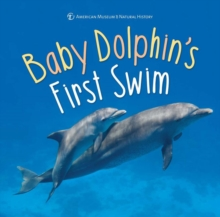 Baby Dolphin's First Swim, Hardback Book