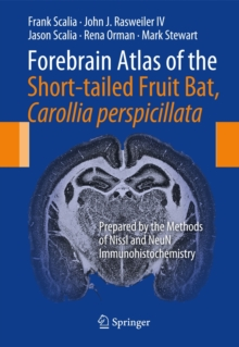 Forebrain Atlas of the Short-Tailed Fruit Bat, Carollia Perspicillata : Prepared by the Methods of Nissl and Neun Immunohistochemistry, Spiral bound Book