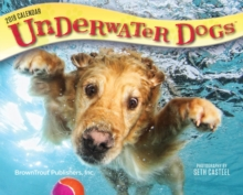 Underwater Dogs 2019 Day-to-Day Calendar, Calendar Book