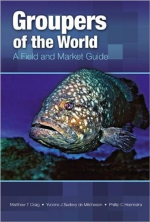 Groupers of the World : A Field and Market Guide, Hardback Book
