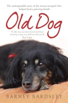 Old Dog, Paperback Book