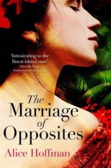 The Marriage of Opposites, Paperback / softback Book