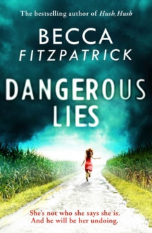 Dangerous Lies, Hardback Book