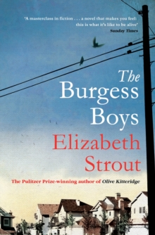 The Burgess Boys, Paperback / softback Book