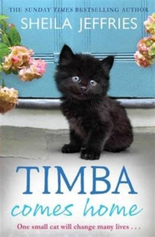 Timba Comes Home, Paperback Book