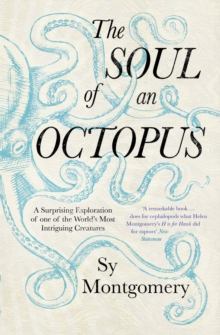 Soul of an Octopus: A Surprising Exploration Into the Wonder of Consciousness, Paperback Book
