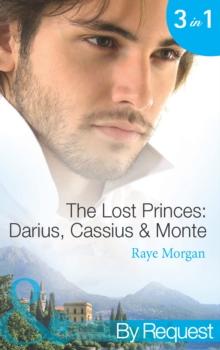 The Lost Prince Ebook