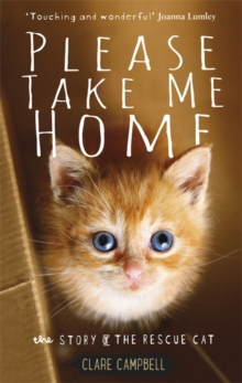 Please Take Me Home : The Story of the Rescue Cat, Hardback Book