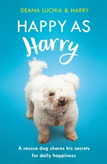 Happy as Harry : A rescue dog shares his secrets for daily happiness, Hardback Book
