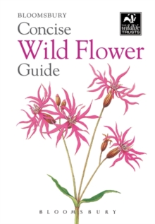 Concise Wild Flower Guide, Paperback Book