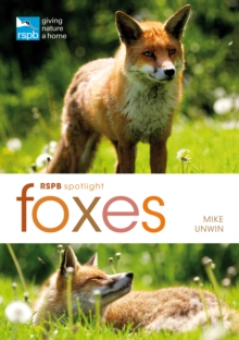 RSPB Spotlight: Foxes, Paperback Book